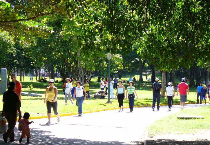 Caminar por lugares transitados, con gente es una de las medidas preventivas. (Contexto/Internet)