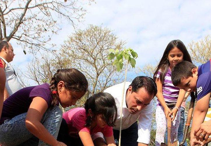 El alcalde Mauricio Vila Dosal en actividades de reforestación. El Ayuntamiento entregó 750 arbolitos en la Biciruta y continuará el reparto en escuelas. (Foto cortesía del Ayuntamiento)