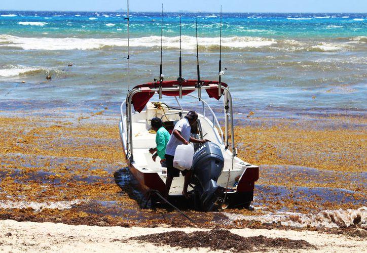 Tours operadores esperan que el puerto se abra para el cierre de las vacaciones. (Octavio Martínez/SIPSE)