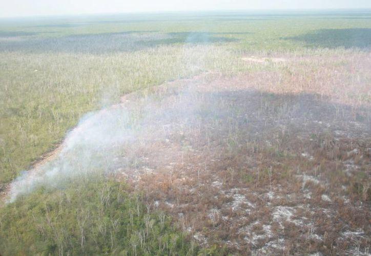 La capa de humo afecta por la tarde y mañana a la capital del estado. (Archivo/SIPSE)