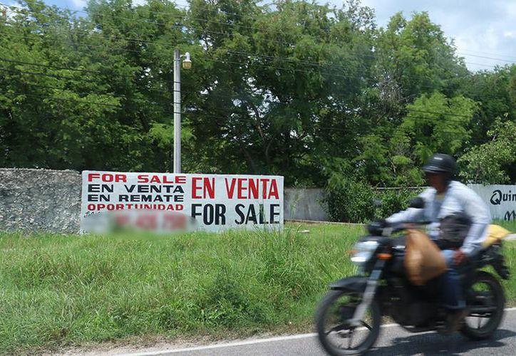Un chofer habría adquirido tierras por $16 millones. (Milenio Novedades)
