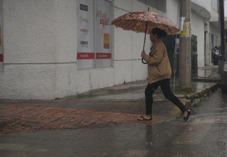 Dura poco el clima cálido en Chetumal. (Harold Alcocer/SIPSE)
