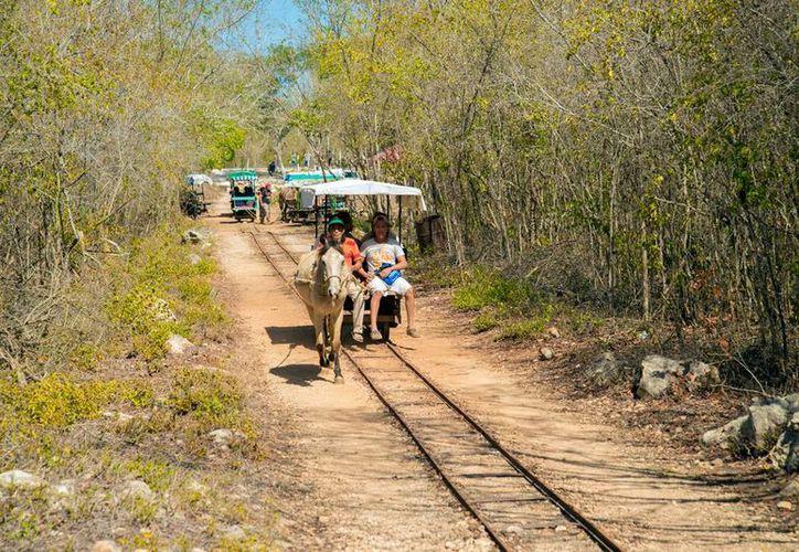 En Cuzamá, gente de la comunidad se organizó para explotar turísticamente varios atractivos. (Archivo/Milenio Novedades)