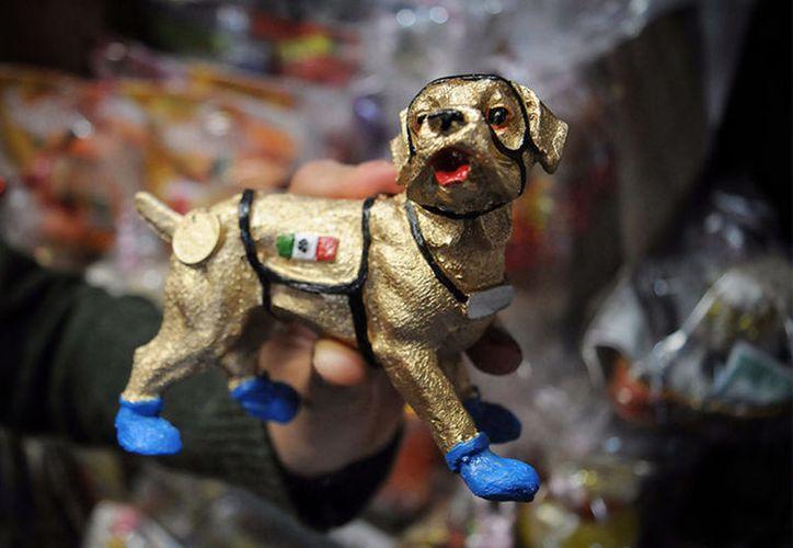 Frida pertenece a la sección canina de la Oficialía Mayor de la Secretaría de Marina-Armada de México. (Excelsior)