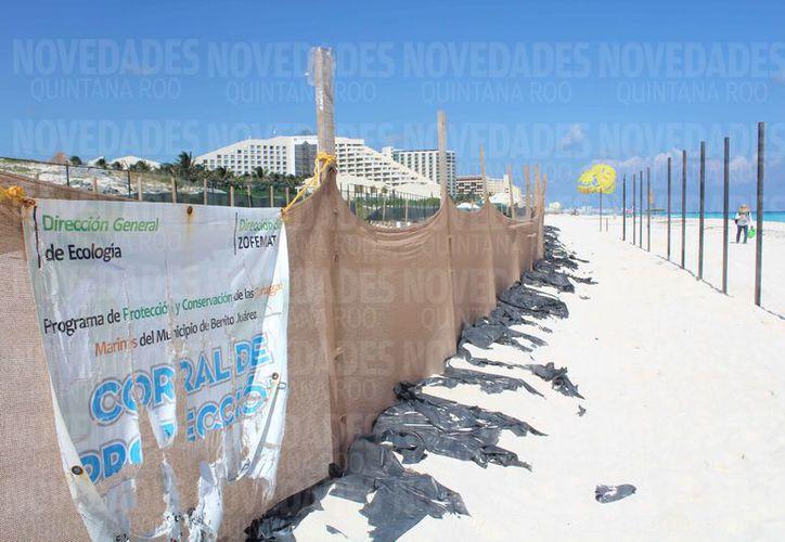 Construirán un hotel de 449 habitaciones en Playa Delfines. (Israel Leal/SIPSE)