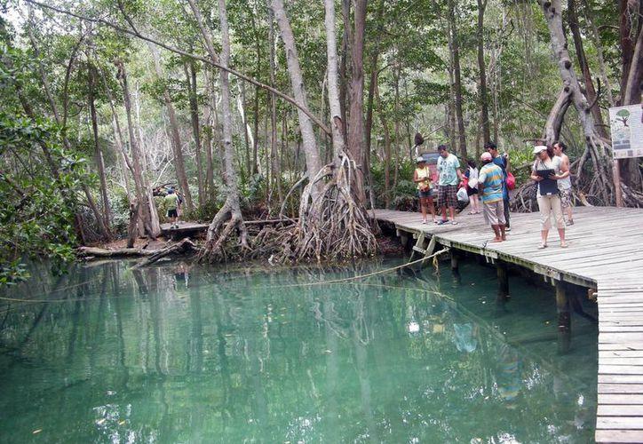 El 'ojo de agua' de Celestún es uno de los sitios más visitados por vacacionistas yucatecos. (Milenio Novedades)