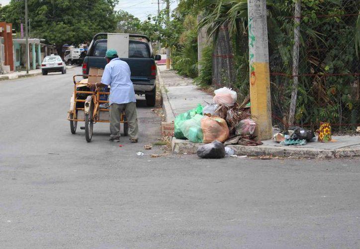 Numerosas bolsas de basura se acumulan frente a los domicilios. (Jesús Caamal/SIPSE)