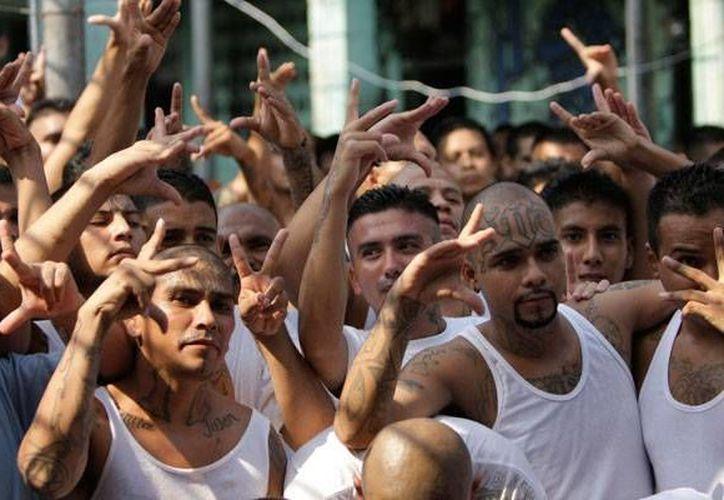 En El Salvador, considerado uno de los países más violentos del mundo, los pandilleros están involucrados en la mayoría de los crímenes. (Archivo/AP)