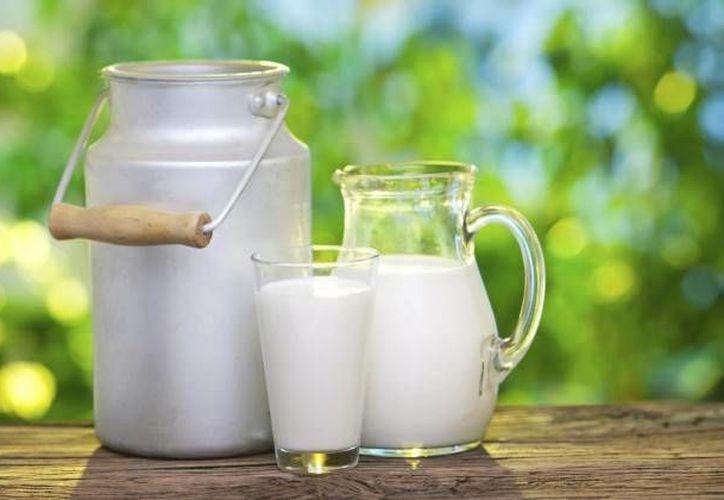 Uno de los alimentos más difíciles de digerir por nuestro cuerpo es la leche y todos sus derivados. (Contexto/Internet)