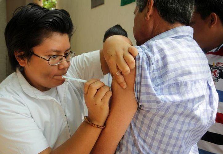 En la temporada interestacional 2018 se observa circulación de influenza AH1N1. (Archivo)