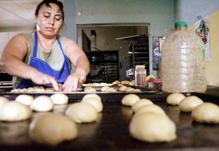 Algunos beneficiarios se deciden por la apertura de panaderías. (Milenio Novedades)