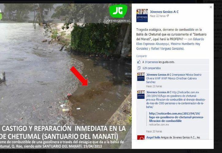 La cuenta de Facebook de Jóvenes Genios AC, exhibió el ecocidio. (Harold Alcocer/SIPSE)