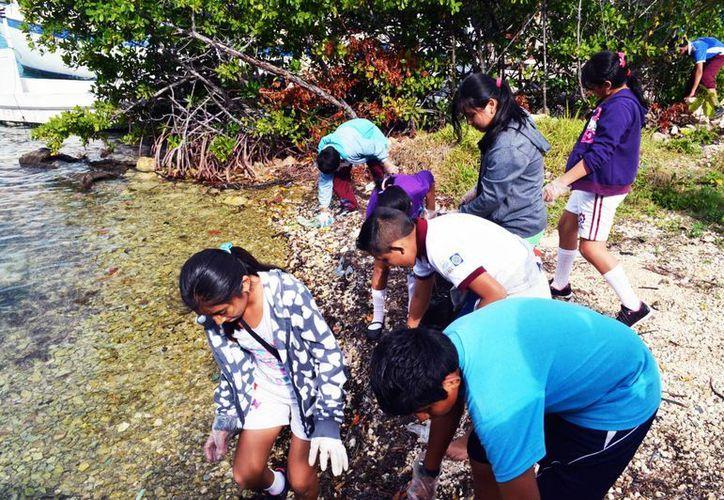 Los humedales de Isla Mujeres fueron limpiados con el fin de conservar esta área natural protegidas. (Redacción/SIPSE)