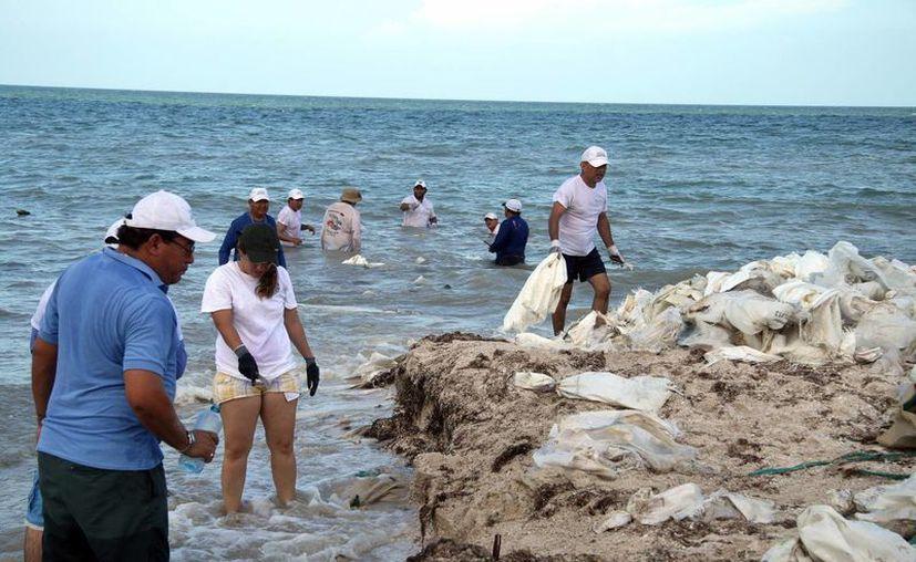 Personal de la Profepa retira espolones de la playa. (Milenio Novedades)
