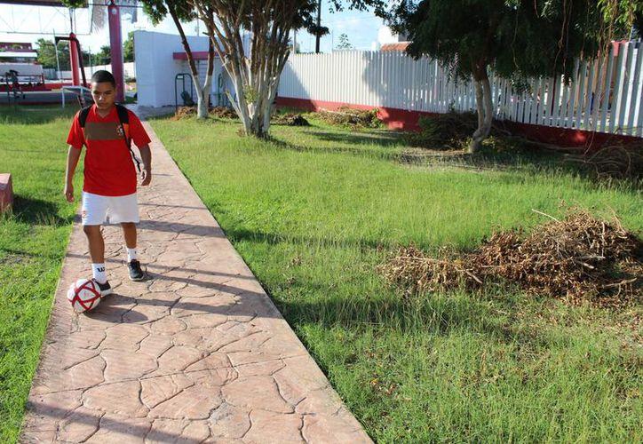 En la Unidad Deportiva se invirtieron se invirtieron cerca de 40 millones de pesos, y ahora está en completo abandono. (Foto:  Miguel Maldonado)