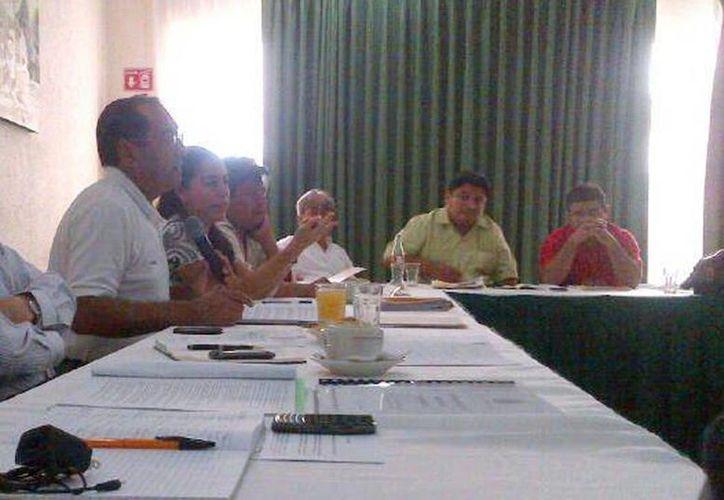 Integrantes de Docentes Unidos por Yucatán se reunieron ayer. (Milenio Novedades)