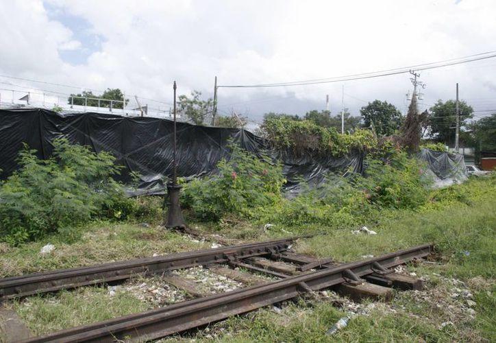 El Tren Transpeninsular tendría que expropiar tierras de comunidades mayas. (Octavio Martínez/SIPSE)