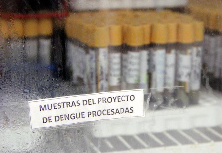 En menos de un mes la Secretaría de Salud federal ha confirmado la muerte de tres personas por dengue hemorrágico, la más reciente hace unas horas. (SIPSE)