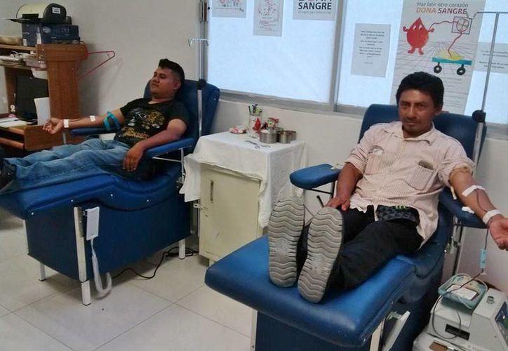 En el 2013 fueron 31 donadores voluntarios de sangre en la isla, cifra que es insignificante con respecto a la población total que asciende a 79 mil 537 habitantes. (Gustavo Villegas/SIPSE)