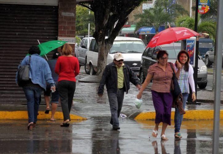 Se estima que la lluvia dejó acumulados de 10 a 15 milímetros de agua. (Archivo/SIPSE)
