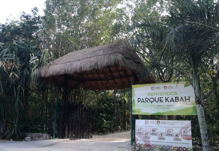 El parque estará abierto al público en general. (Israel Leal/SIPSE)