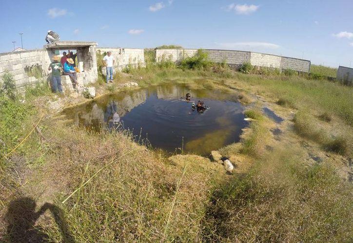 El cenote de Mitza se encuentra en unos terrenos ubicados detrás de la avenida Jacinto Canek, al poniente de Mérida. (SIPSE)