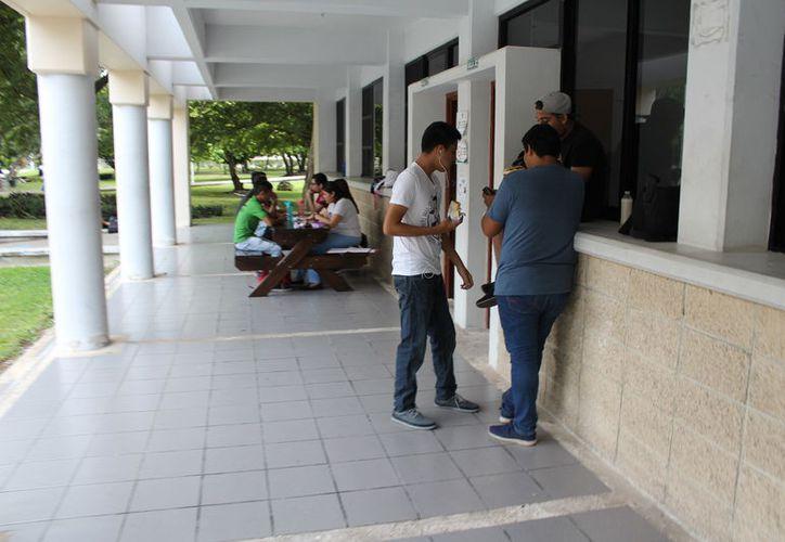 Los municipios donde se reportaron más intentos de suicidios fueron Benito Juárez, Othón P.  Blanco, Solidaridad y Cozumel. (Joel Zamora/SIPSE)