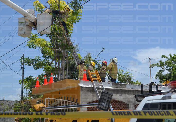 Trabajadores de la CFE rescataron el cuerpo de un hombre que se electrocutó cuando podaba un árbol, en Chetumal. (Redacción/SIPSE)