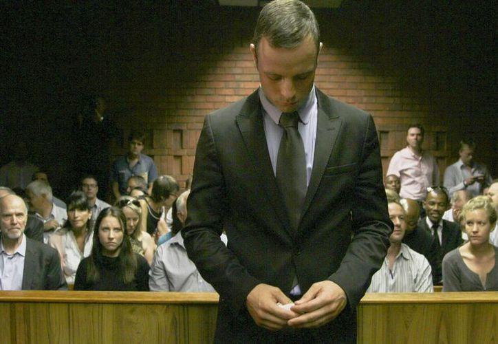 El fiscal dice que Pistorius cometió un asesinato premeditado. (EFE)