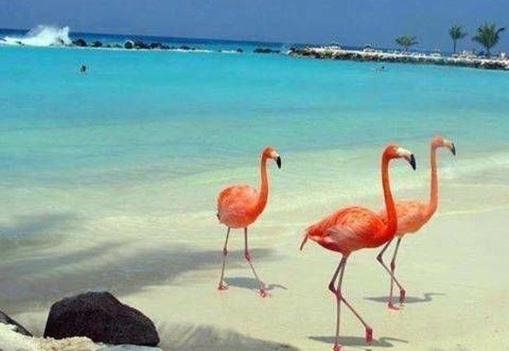 El objetivo es destacar las bellezas de los destinos turísticos. (Contexto/Internet)