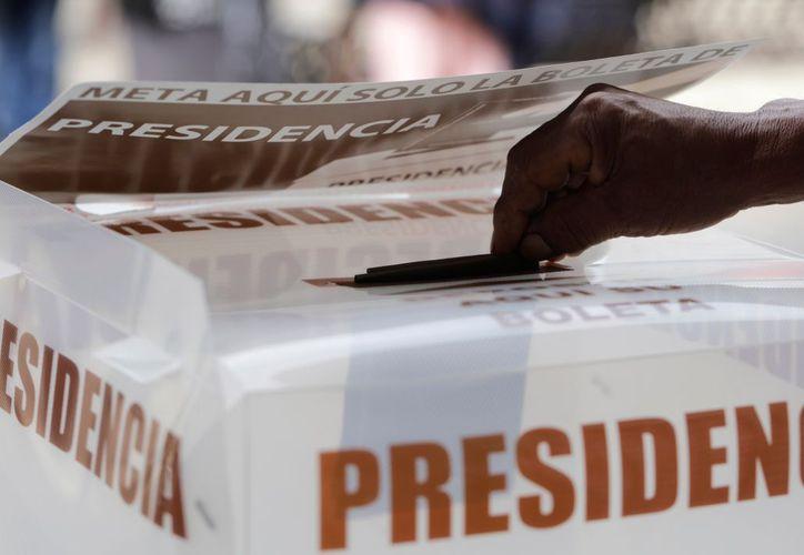 Se acercan al centenar las denuncias en este proceso electoral. (El Financiero)