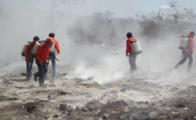 Las autoridades exhortan a no bajar la guardia, pues la temporada de incendios está en pleno apogeo. (Cortesía)