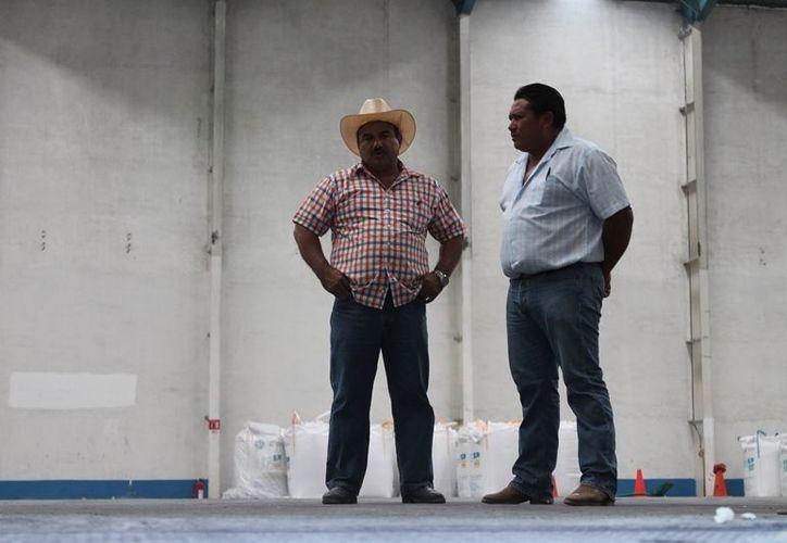 A pesar de que la producción transcurre de manera cotidiana al interior de la fábrica, los guardianes agrícolas no han dejado salir ningún bulto de azúcar. (Edgardo Rodríguez/SIPSE)