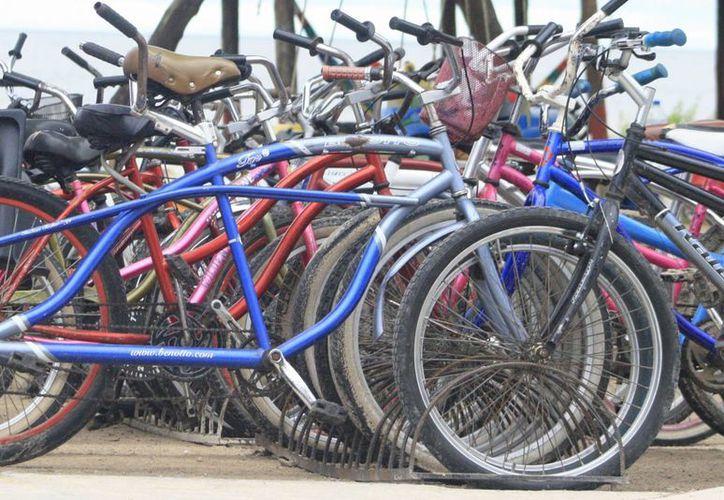 Algunos parques de la capital del estado contarán con paraderos para bicicletas. (Harold Alcocer/SIPSE)