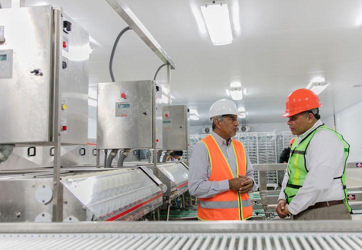 El sector industrial de Yucatán impulsó el crecimiento económico de la entidad. (Cortesía)