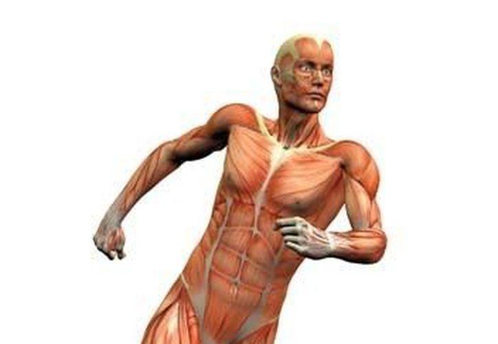 Esta novedosa técnica consiste en la introducción de genes en el cuerpo humano para mejorar su rendimiento físico.  (Milenio)