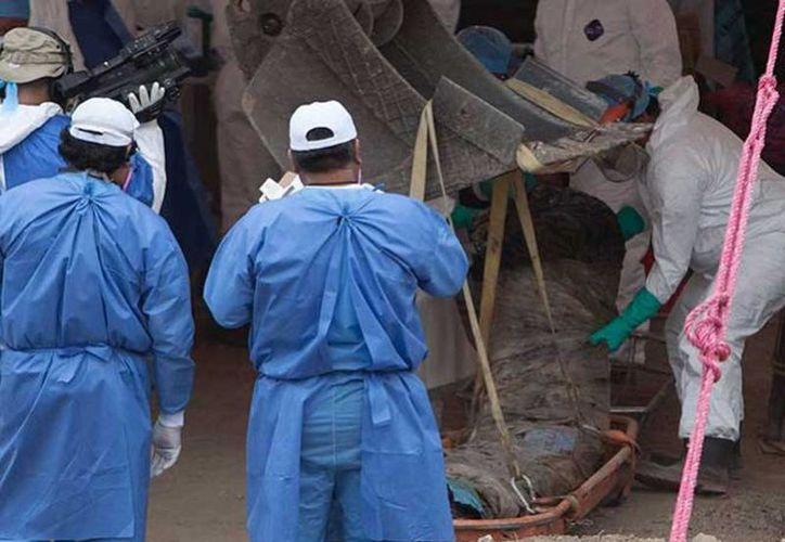 El dictamen es resultado del análisis de una petición para conocer el número total de fosas e inhumaciones clandestinas que fue declinada por el INAI. (Excelsior)