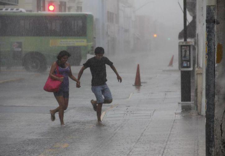 Las lluvias de los últimos días han provocado el desbordamiento de aguas residuales en la colonia Los Tamarindos. (Juan Carlos Albornoz/SIPSE)