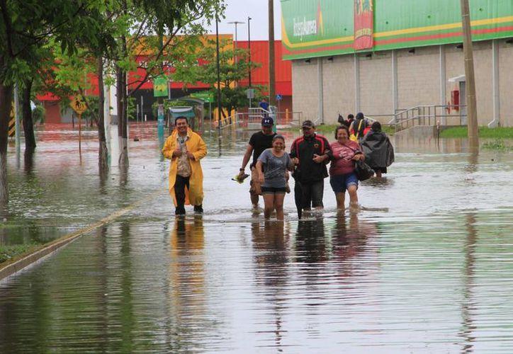 A partir de hoy realizarán la evaluación de los daños que dejaron las lluvias de los últimos días. (Ángel Castilla/SIPSE)