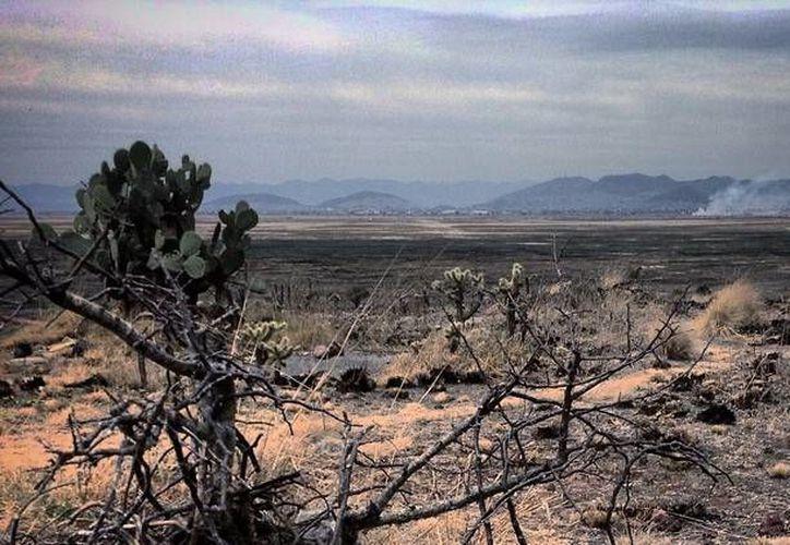 Vista de lo que queda del Lago de Texcoco desde el cerro del Tepetzinco. (Aldabi Olvera/actualidad.rt.com)