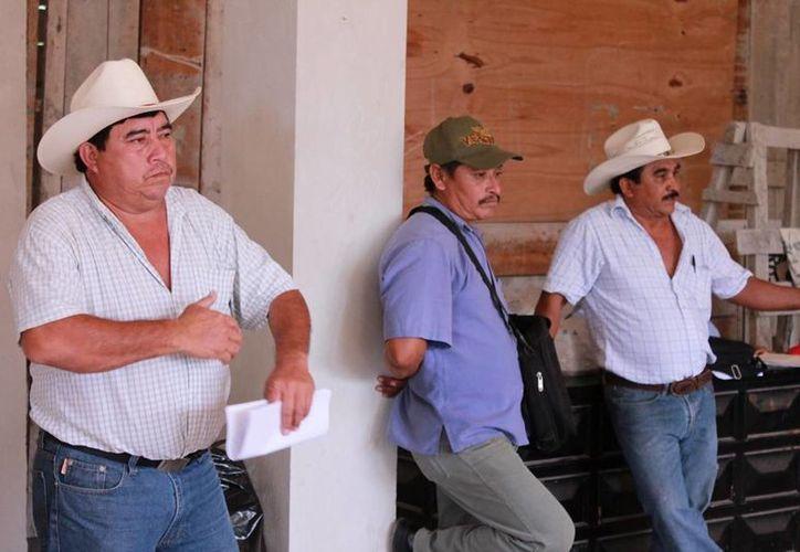 Los productores manifiestan que al término de las elecciones esperan no tener alguna otra excusa para recibir el apoyo. (Edgardo Rodríguez/SIPSE)
