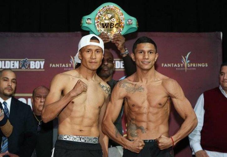 El boxeador yucateco Miguel 'Alacrán' Berchelt (d) venció a su primer rival, la báscula, y ahora enfrentará al  invicto campeón mundial súperpluma del CMB, Francisco 'Bandido' Vargas.
