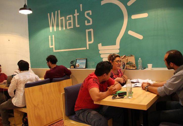 Jóvenes yucatecos tienen la oportunidad de hacer realidad sus sueños mediante los diferentes programas para emprendedores de Yucatán.(Milenio Novedades)