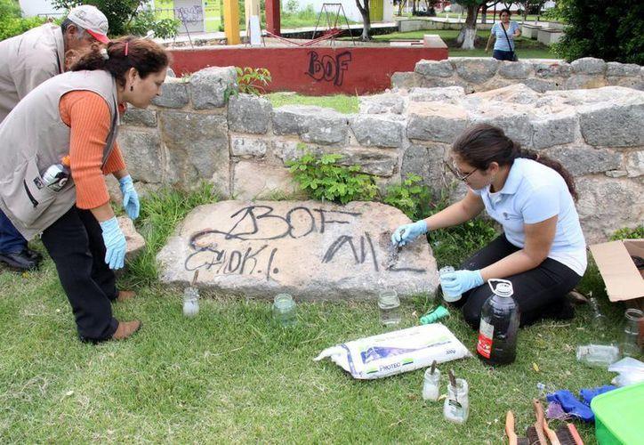 El proyecto de limpieza de parques ecoarqueológicos busca involucrar a los meridanos. (SIPSE)