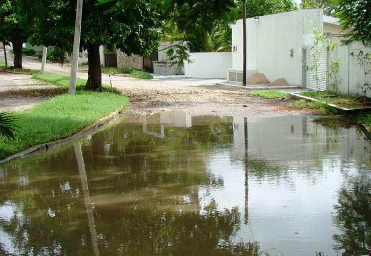 Las lluvias registradas en agosto del 2012 dejaron daños en los caminos del municipio. (Omar Capistrain/SIPSE)