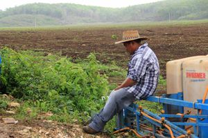 El sur de Yucatán sufre por exceso de lluvia