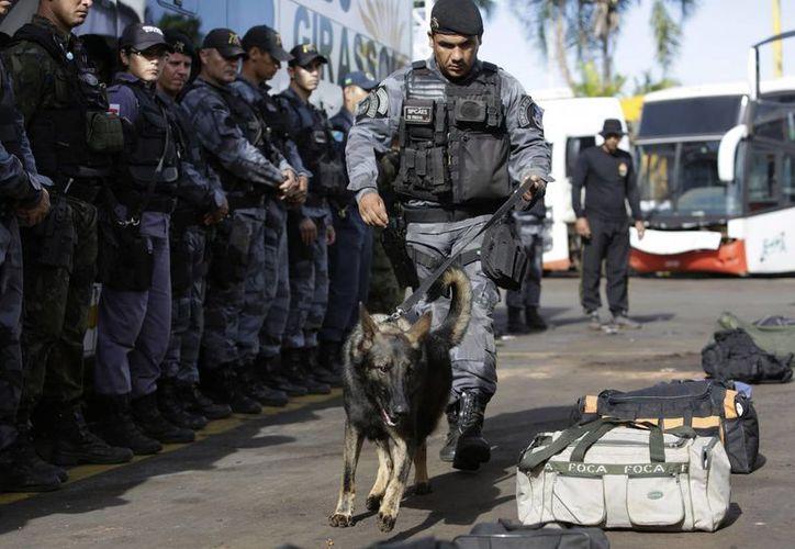 La Policía brasileña se ha capacitado para contener manifestaciones y hasta detectar explosivos previo a la Copa del Mundo. (Agencias)