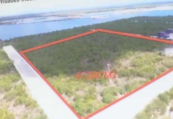 Este es el terreno en el que se instalará la planta de molienda. (Milenio Novedades)