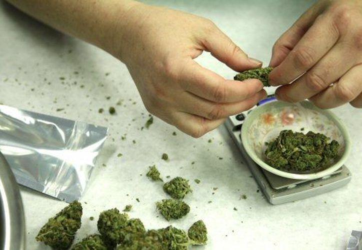 En el estado de Washington ya comenzaron a indultarse los primeros casos de posesión de la droga. (Agencias)