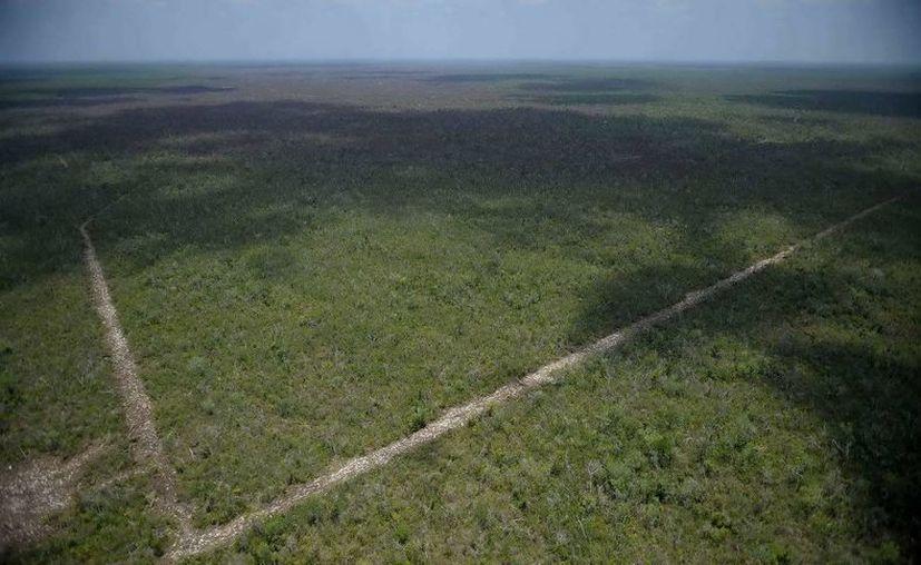 Con el calendario se espera dar un mejor uso al fuego en la preparación  de los terrenos de uso agropecuario. (Redacción/SIPSE)
